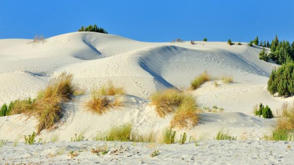 Dune di Porto Pino, S. Anna Arresi